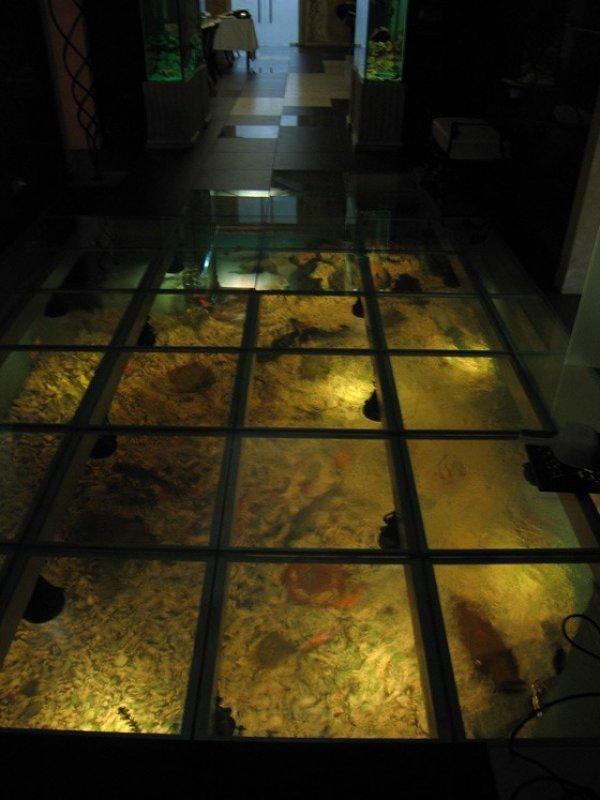 Как сделать аквариум в полу своими руками 78